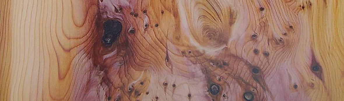 Peinture Décorative Trompe L œil Peinture Panoramique